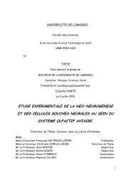 Texte intégral en version PDF - Epublications