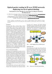 Optical packet routing in IP-over-WDM networks ... - IST STOLAS