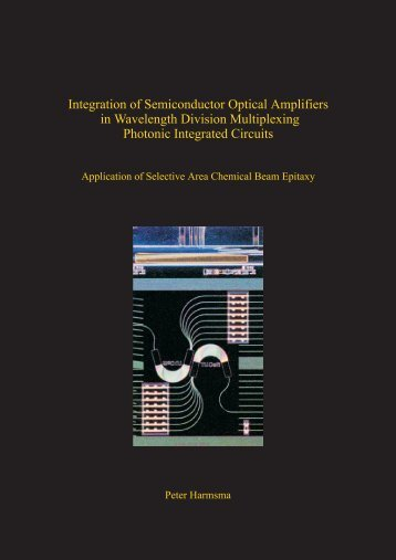 Integration of Semiconductor Optical Amplifiers in Wavelength ...
