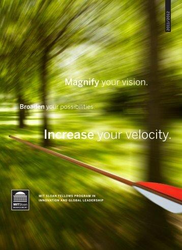 Download the brochure - MIT Sloan