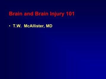 Brain and Brain Injury 101
