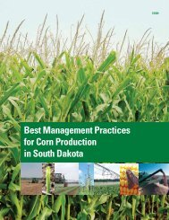 Best Management Practices for Corn Production in South Dakota