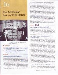CH 16 DNA Replication