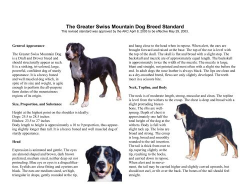 Illustrated Breed Standard Greater Swiss Mountain Dog Club