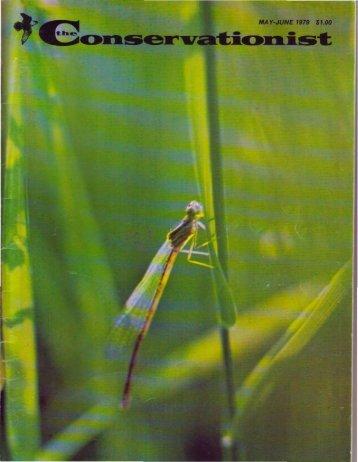 Simon, C. 1979. Magicicada - Ecology & Evolutionary Biology