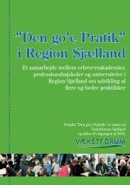 """Den go'e Pratik"""" i Region Sjælland"""