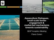 7. Aquaculture Dialogues – Flavio Corsin - SEAT Global