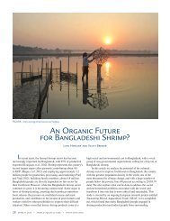 An Organic Future for Bangladeshi Shrimp? - SEAT Global