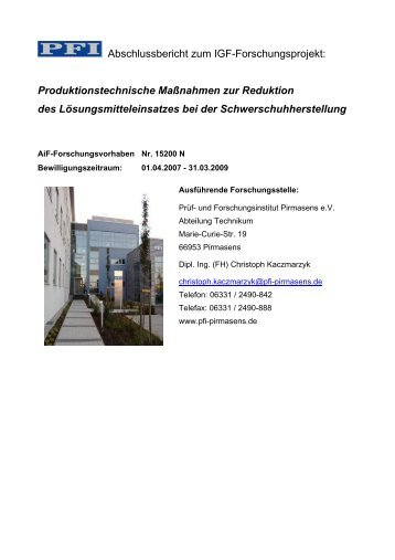 Bericht als PDF Dokument - PFI Germany Start