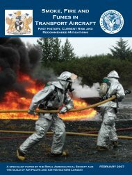 Smoke, Fire and Fumes in Transport Aircraft - Royal Aeronautical ...