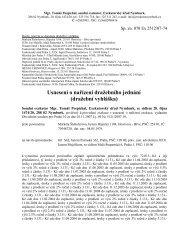 Usnesení o nařízení dražebního jednání (dražební vyhláška) - Praha 3