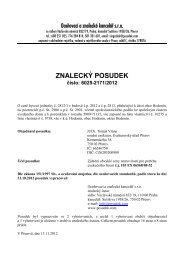 ZNALECKÝ POSUDEK číslo: 6025-2171/2012 - e-aukce