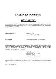 ZNALECKÝ POSUDEK 3173-389/2012 - Sreality.cz