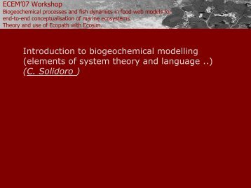 Introduction to biogeochemical modelling - University of Trieste