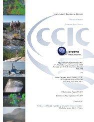 Nieves NI43-101 Resource Estimate Report. - Quaterra Resources Inc