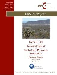 Nieves Project - Quaterra Resources Inc