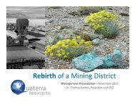 Rebirth of a Mining District - Quaterra Resources Inc