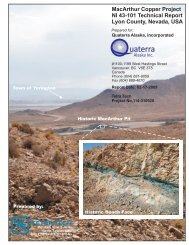 NI43-101 Report February 2009, MacArthur Copper Project