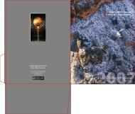 2007 Annual Report - Quaterra Resources Inc