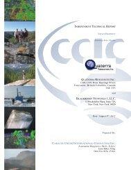 Nieves NI43-101 Resource Technical Report. - Aug. 2012 - Quaterra ...