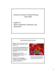pdf11 - AU/BIO