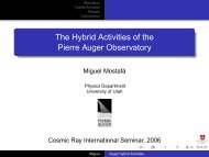 The Hybrid Activities of the Pierre Auger Observatory