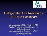 Halogenated Fire Retardants - Natural Resources Defense Council