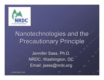 Nanotechnologies and the Precautionary Principle
