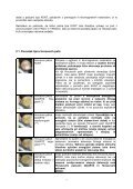 HORUSOVE PALICE - Shrani.si - Page 7