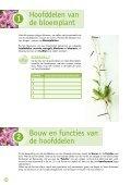 Bouw van de bloemplant - Page 3