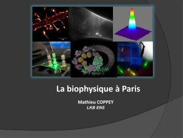 Biophysique - Enseignement en Physique à l'ENS