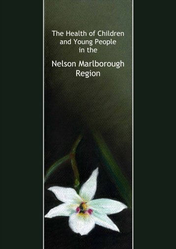 Child and Youth Health Status 3, Nov 2007 - Nelson Marlborough ...