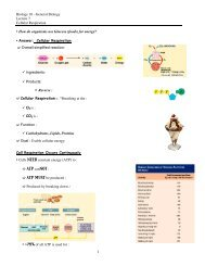 Biology 10 - General Biology Lecture 7 Cellular Respiration • How ...