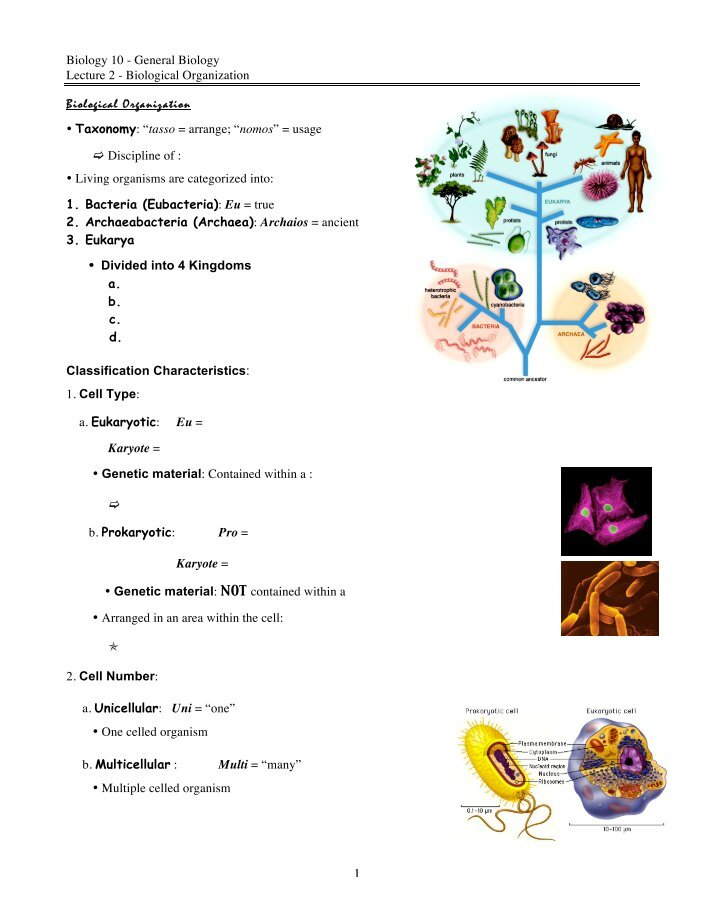 general biology lecture notes General biology 115 lecture notes lecture 1: scientific method lecture 2: chemistry of life lecture 3: biological molecules lecture 4: origins of life.