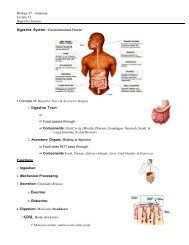 Biology 47 - Anatomy Lecture 12 Digestive System : Digestive ...