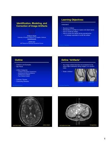 Identification, Modeling, and Correction of Image Artifacts - MREL ...