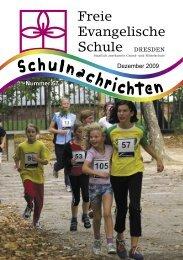 Lichterfest 2009 - FES Dresden
