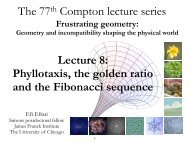 Phyllotaxis, the golden ratio and the Fibonacci sequence