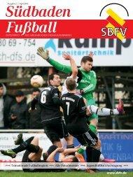 Ausgabe 2   April 2013 - SBFV