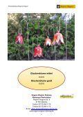 downloaden - Regens Wagner Stiftungen - Page 6