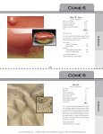 top ten cone 6 glaze recipes - Ceramic Arts Daily - Page 4