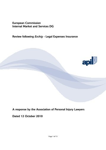 European Commission Internal Market and Services DG Review - Apil