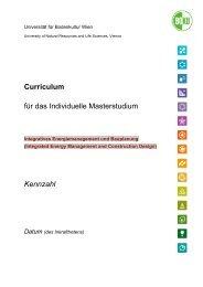 Curriculum für das Individuelle Masterstudium Kennzahl