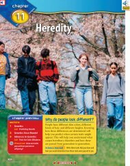 Chapter 11: Heredity