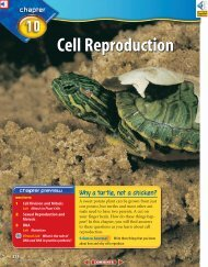 Chapter 10: Cell Reproduction
