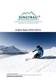 Jungfrau Region Winter
