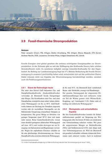 3.9 Fossil-thermische Stromproduktion