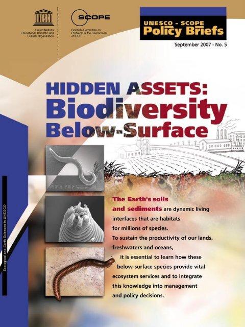 Hidden Assets: Biodiversity Below-Surface - Scientific Committee on ...
