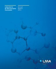 LMA - Annual Report 2011 - INA
