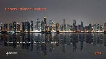 Danish District Heating - DBDH